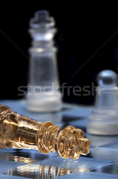 Chess king lays on a chessboard. A victory and defeat.  Stock photo © cookelma
