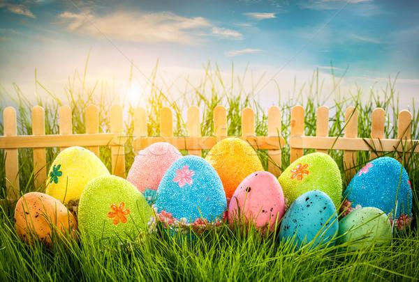 украшенный пасхальных яиц трава Blue Sky небе цветок Сток-фото © cookelma