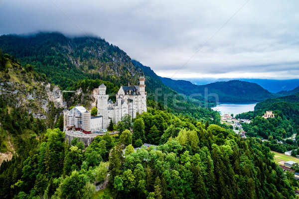 ストックフォト: ノイシュヴァンシュタイン城 · アルプス山脈 · ドイツ · 森林 · 山 · 夏