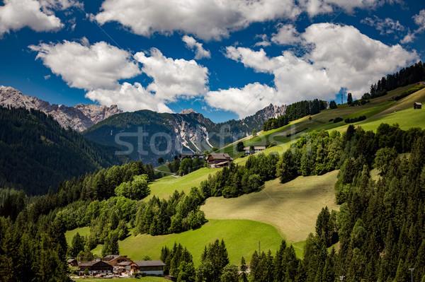 живописный мнение красивой пейзаж Альпы природы Сток-фото © cookelma