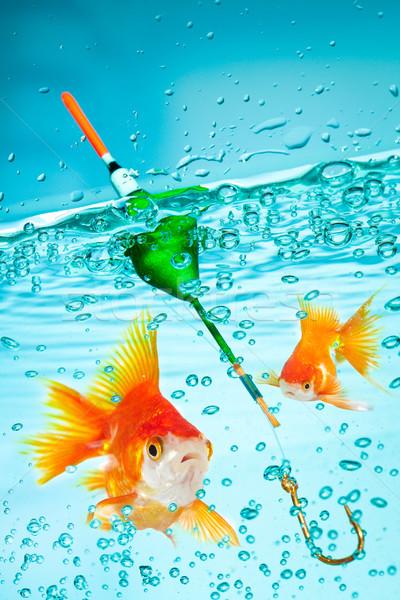 Fishing Stock photo © cookelma