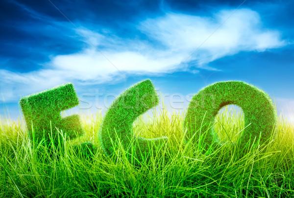 Eco concept Stock photo © cookelma