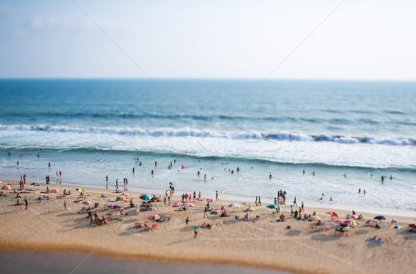 ビーチ インド 海 インド シフト レンズ ストックフォト © cookelma