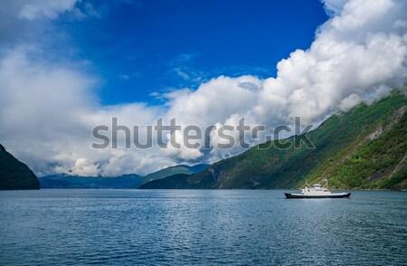 Kruis mooie natuur Noorwegen hemel water Stockfoto © cookelma