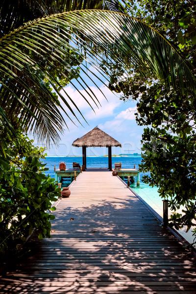 Мальдивы место пляж свадьбах природы деревья Сток-фото © cookelma
