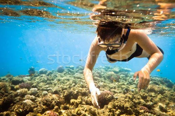 Snorkeler. Red sea Stock photo © cookelma