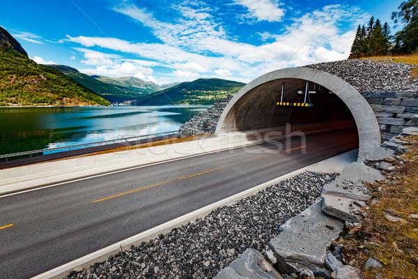 Montana carretera Noruega entrada túnel cielo Foto stock © cookelma