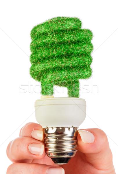 Eco gloeilamp hand geïsoleerd witte achtergrond Stockfoto © cookelma
