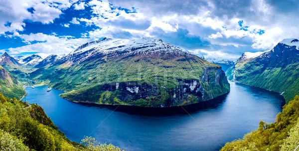 Noruega hermosa naturaleza largo rama Foto stock © cookelma