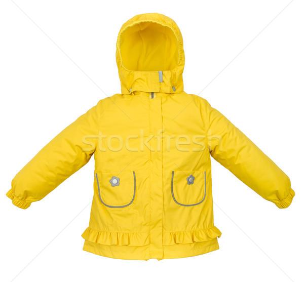 Women winter jacket Stock photo © cookelma