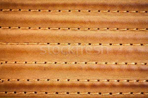 leather stitched by threads Stock photo © cookelma