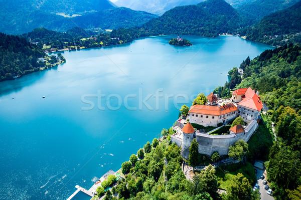 Stock fotó: Szlovénia · üdülőhely · tó · légifelvétel · légi · égbolt