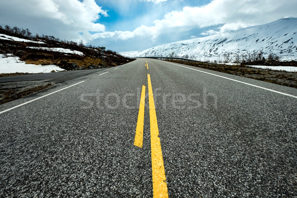 Road in Norway Stock photo © cookelma