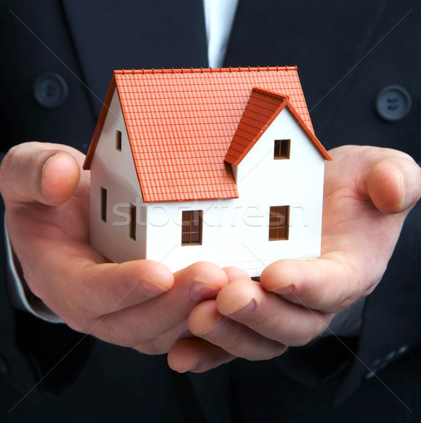 The house in a hand Stock photo © cookelma