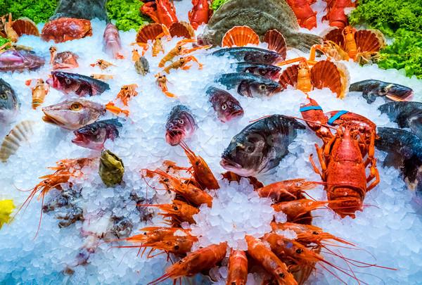 различный морепродуктов Полки рыбы рынке морем Сток-фото © cookelma