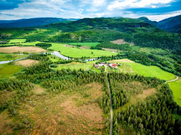 Belo natureza Noruega fotografia naturalismo Foto stock © cookelma