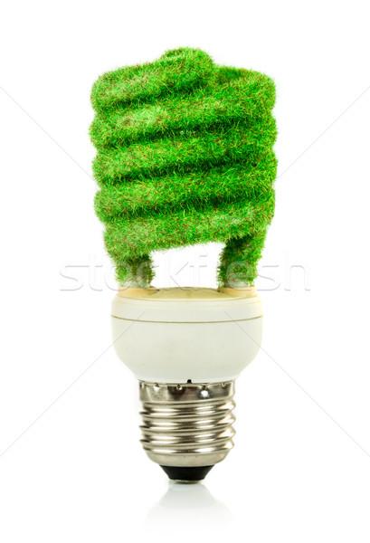 Stockfoto: Eco · gloeilamp · geïsoleerd · witte · achtergrond · lamp