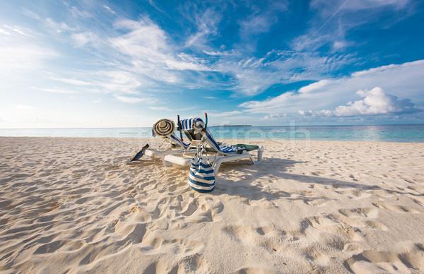 Maldivler plaj tropikal doğa manzara palmiye Stok fotoğraf © cookelma