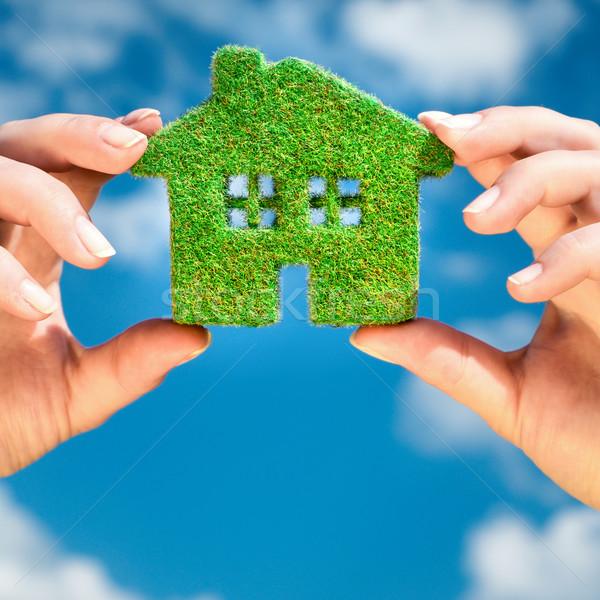 Grass home Stock photo © cookelma