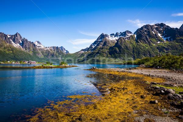 Lofoten archipelago islands Norway Stock photo © cookelma