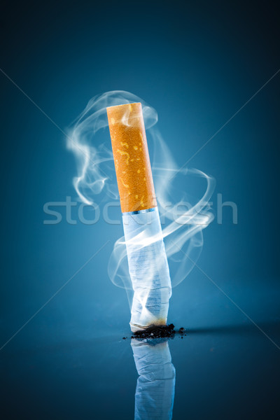 Cigarette butt - No smoking. Stock photo © cookelma