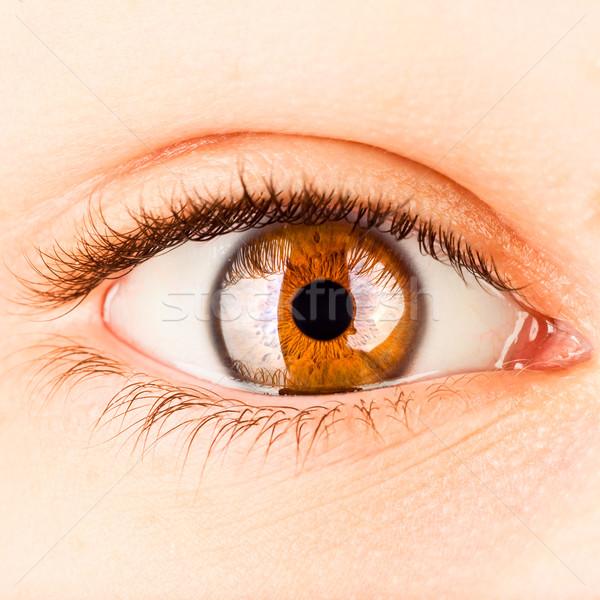Menselijke oog foto vrouw kleur Stockfoto © cookelma
