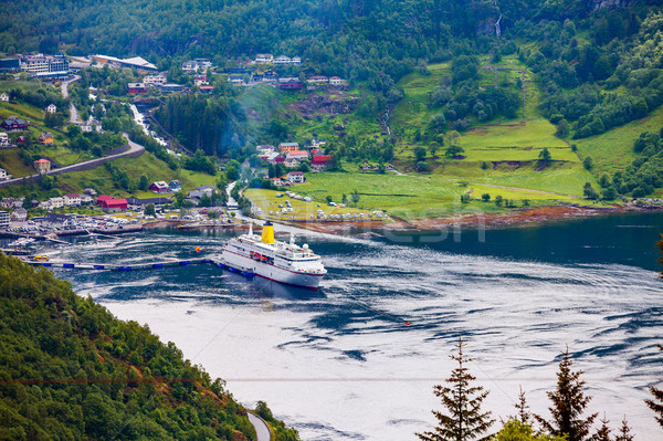 Noruega belo natureza longo ramo Foto stock © cookelma
