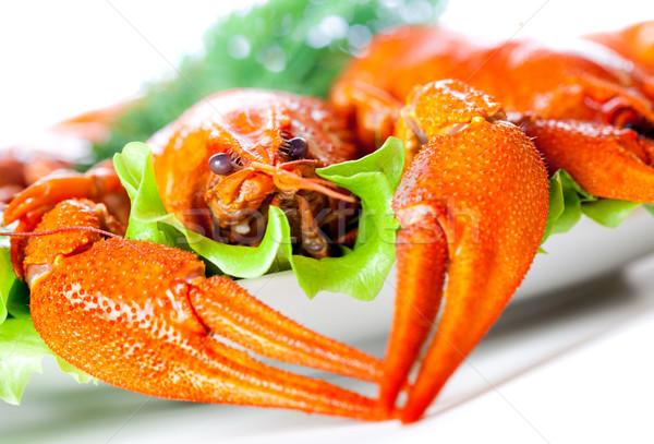 crawfish Stock photo © cookelma