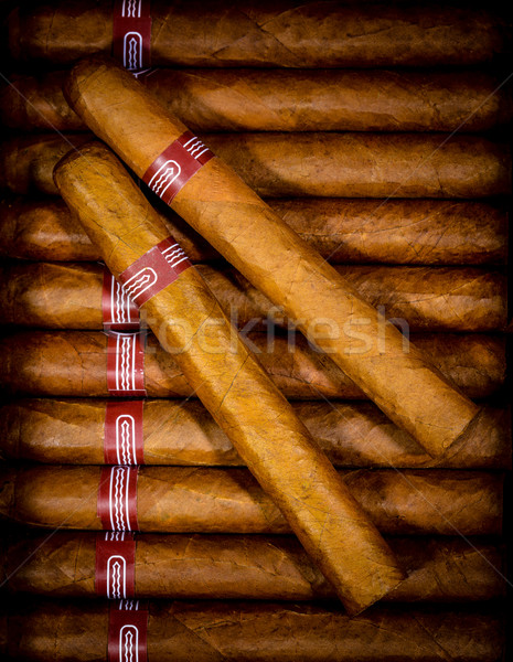 background cigars in humidor Stock photo © cookelma