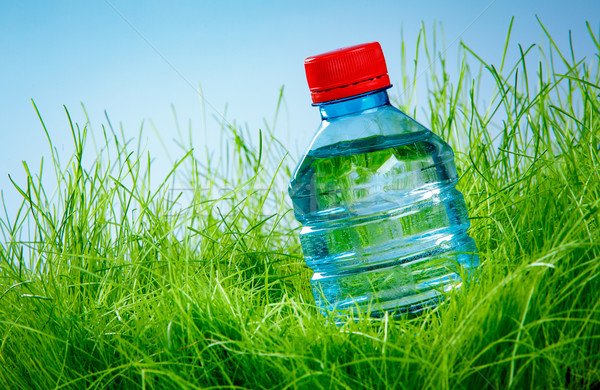 Water bottle on the grass Stock photo © cookelma