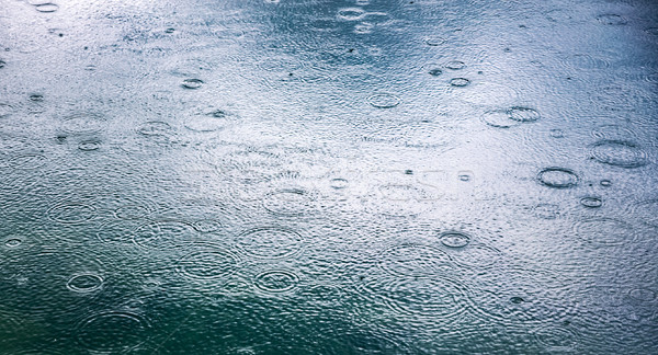 Abstract background, rain drops on the water Stock photo © cookelma