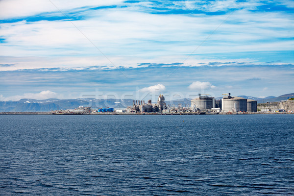 Ilha norte Noruega alto planta céu Foto stock © cookelma