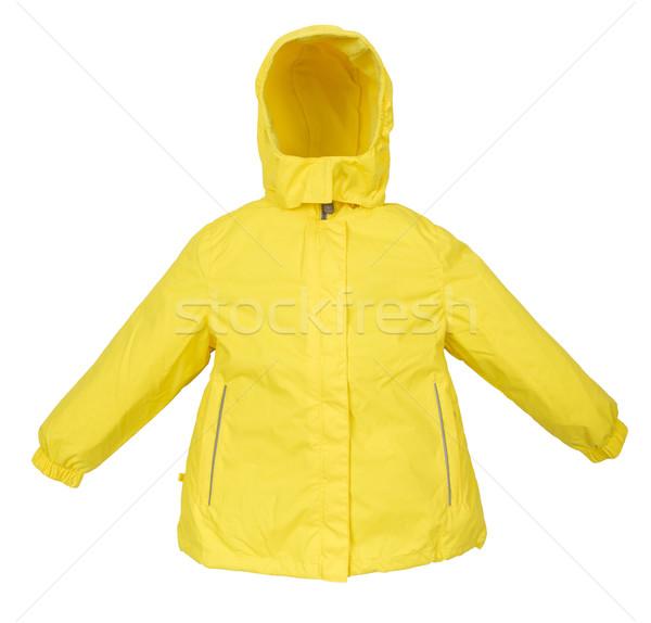 Femmes hiver veste isolé blanche design Photo stock © cookelma