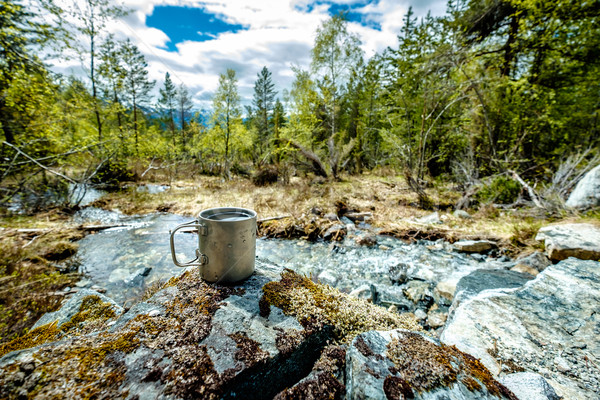 Utazás titán csésze ebéd utazás vad Stock fotó © cookelma