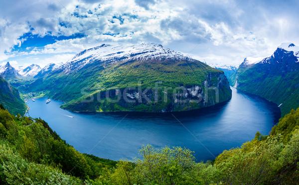 Norvegia bella natura lungo ramo Foto d'archivio © cookelma