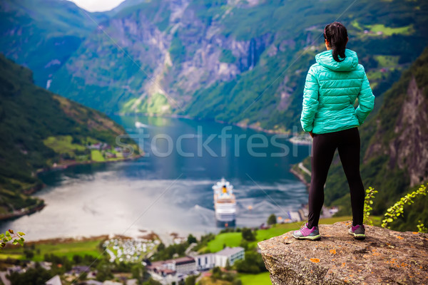 Норвегия красивой природы Панорама долго филиала Сток-фото © cookelma