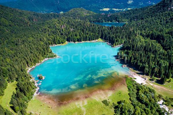 Tó Olaszország Alpok légi természet zöld Stock fotó © cookelma