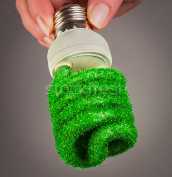 Eco ampul el gri arka plan lamba Stok fotoğraf © cookelma