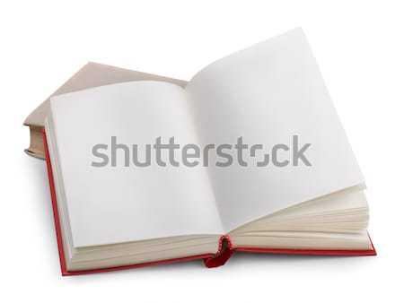 Сток-фото: два · книгах · старые · изолированный · белый · бизнеса