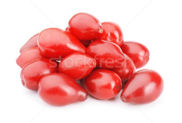 Cornel berries Stock photo © coprid