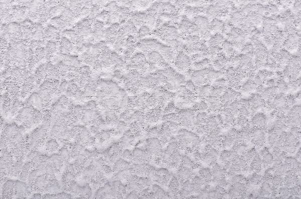 Roughcast Stock photo © coprid