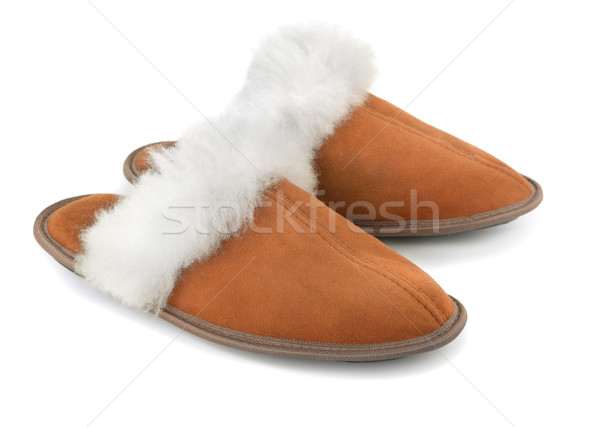 Slippers Stock photo © coprid