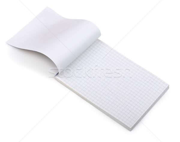 ноутбук открытых изолированный белый бумаги книга Сток-фото © coprid
