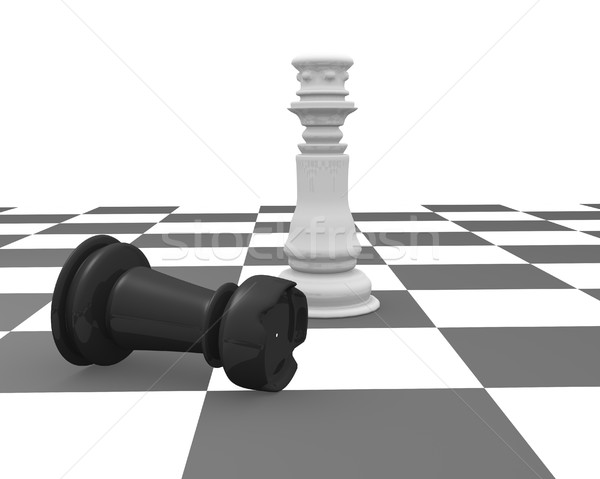 King and rook Stock photo © coramax