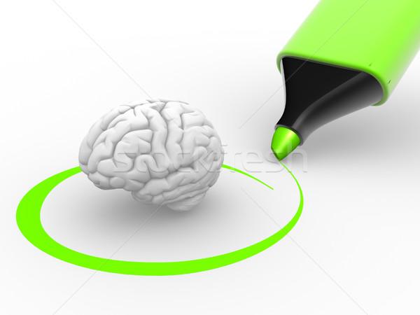Stockfoto: Hersenen · 3D · groene · fiche · 3d · render · wetenschap