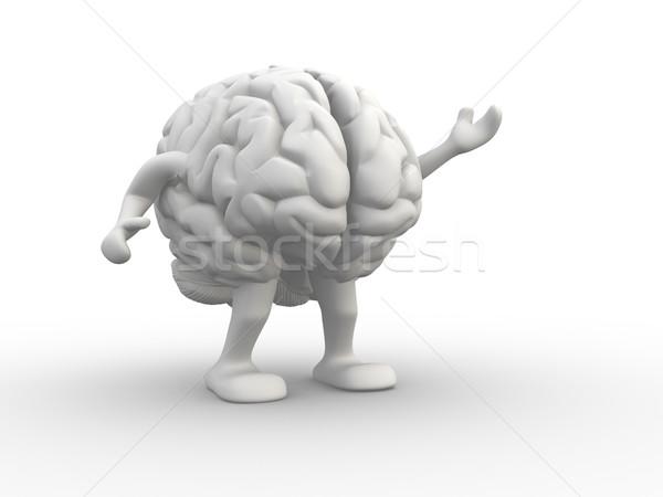 脳 3dのレンダリング 実例 教育 科学 徒歩 ストックフォト © coramax