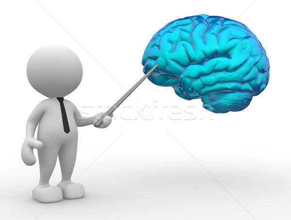 Mózgu 3d osób człowiek osoby wskazując medycznych Zdjęcia stock © coramax