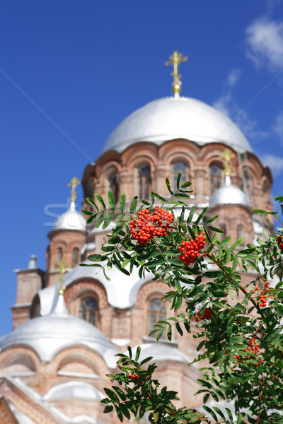 Old Russian Orthodox Cathedral Stock photo © cosma
