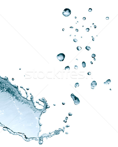 Water Drops On White Stock photo © cosma