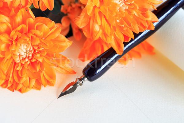 Szeretet történet klasszikus tinta toll virágok Stock fotó © cosma